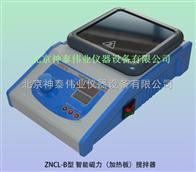ZNCL-B磁力攪拌器
