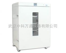 DGG-9000广州立式电热鼓风干燥机生产专业