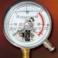 YBF系列不锈钢压力表