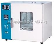 上海數顯電熱鼓風干燥箱價格
