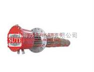 集束式电加热器ST1049