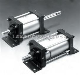 CDS1B125-300-JR-Z73SMC标准气缸