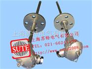 ST1035固定法兰式热电偶