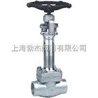 DZ11Y 型 150(Lb)~800(Lb) 锻钢低温闸阀