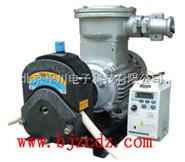 JL.11-JL-V1/353Y  交流防爆蠕动泵 北京