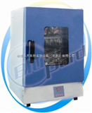 DHG-9031A干燥箱(自然对流