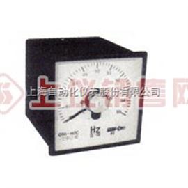 Q96-HZG 光柱式频率表