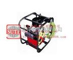 PEA4-12-380B 液壓扳手泵