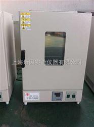 GRX-9240A(AE)干热消毒箱  上海培因