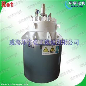 GSH-高温高压电加热反应釜50L