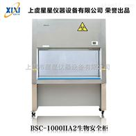 BSC-1000IIA2医用二级生物安全柜
