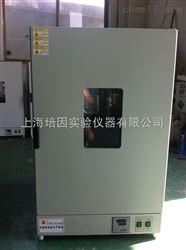 DHG-9140B核桃,红枣恒温鼓风干燥箱