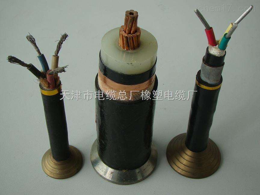 RVVP屏蔽电缆 RVVP软芯屏蔽电缆