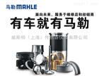 柴油機高壓系統MAHLE電磁閥