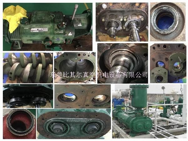 專業維修泰悉爾幹式螺杆真空泵SDV1500