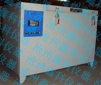 碳化試驗箱TH-W型
