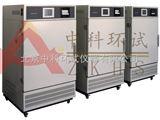 北京综合性药品稳定试验箱厂家
