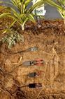 ZL6 土壤含水量、水勢監測係統