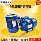 MS100L-6MS100L-6(1.5KW)电机,中研紫光电机