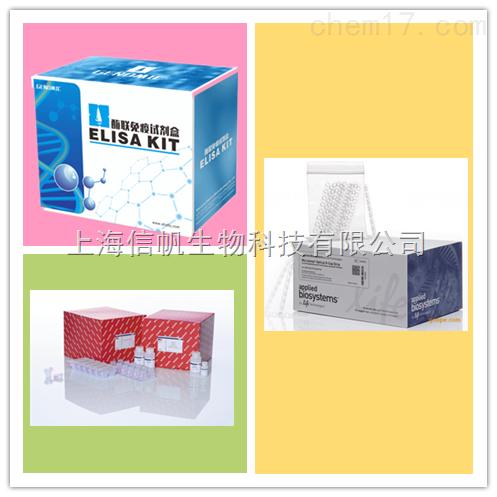 总谷胱甘肽(T-GSH)试剂盒
