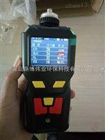 国产的泵吸气体检测仪