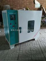 DG-101型101系列建筑仪器电热鼓风干燥箱欢迎来电咨询