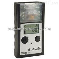 GasBadgeEX 英思科便携式可燃气体报警器