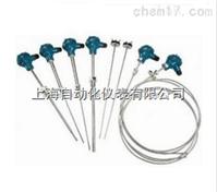 WZPK-231铠装铂电阻WZPK2-231