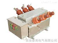 户外10kv高压真空断路器型号.zw6-12/630系列