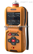 CJ600-HC便携式高精度碳氢分析仪、0-1.000ppm、20000ppm、5%vol