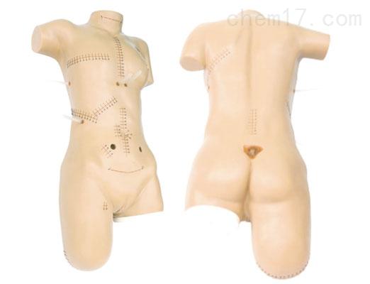 外科缝合包扎展示模型 临床综合专科