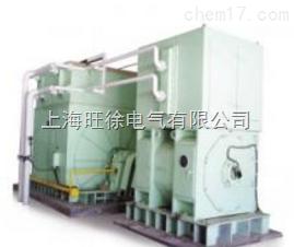 WX-ZF中频发电机组