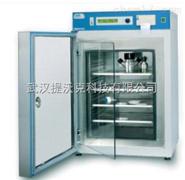 Selecta 双门数控二氧化碳培养箱