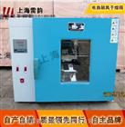 上海干燥箱、电热鼓风干燥箱价格