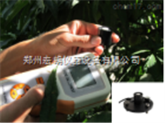 果蔬呼吸測定儀3051H