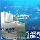 模拟海洋环境水压试验机