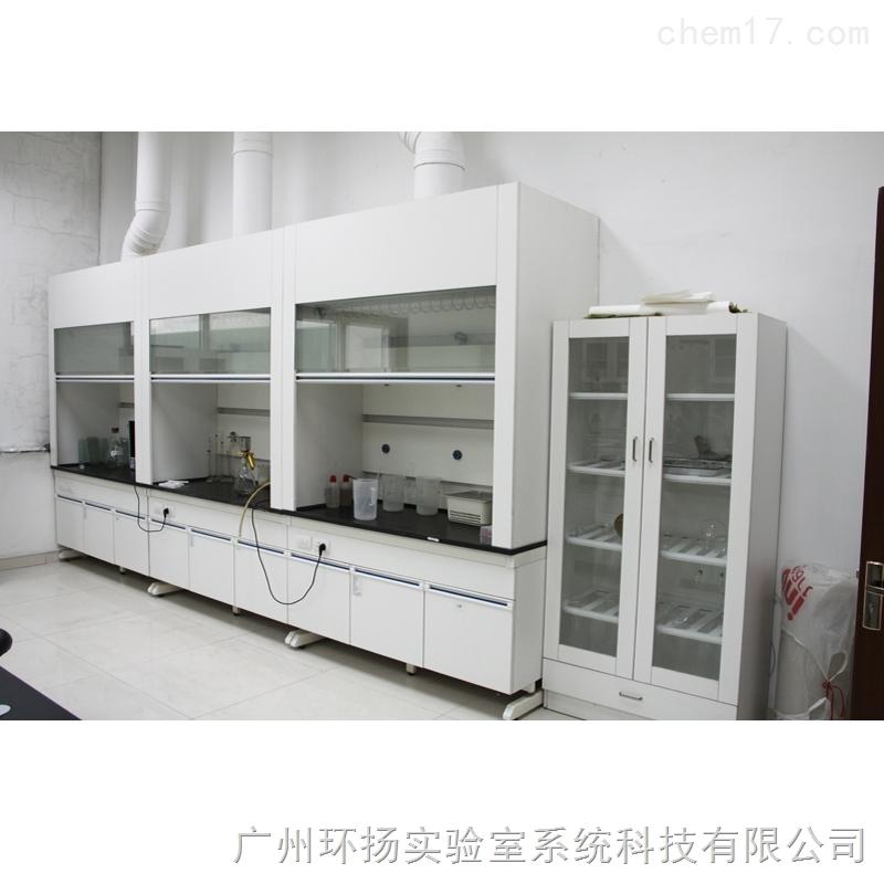实验台 通风柜 实验室家具 通风橱