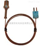 带有微型连接器端的 进口digi-sense特殊电热偶探头