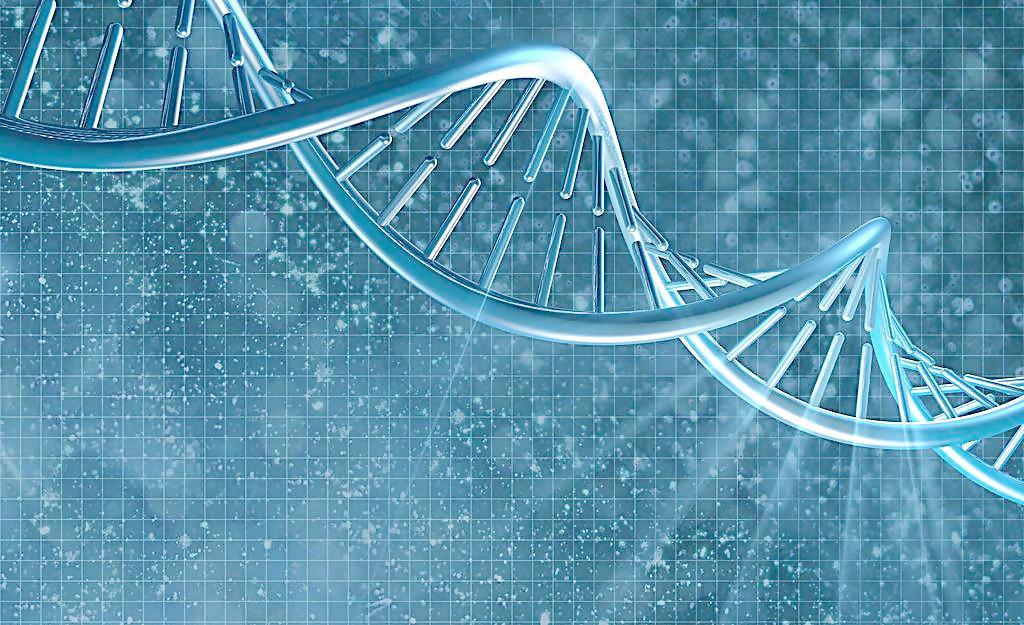 河北科技大学教师韩春雨发布基因编辑新技术