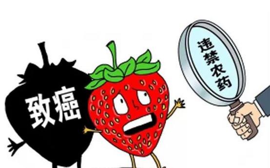 """四个""""最严""""食品安全标准守护""""舌尖上的安全"""""""
