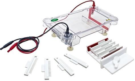 夹芯式垂直电泳槽的使用方法