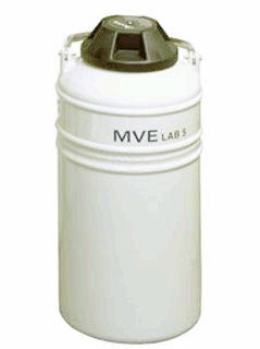 MVELAB5