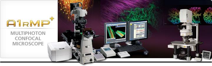 <strong>尼康双光子显微镜 A1R MP/A1R MP+双光子显微成像系统价格</strong>