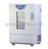 BHO-401ABHO-401A老化试验箱