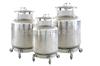 YDZ-100/150/200自增压液氮生物容器