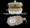 SBD1101-YQL50D护栏式防爆灯首选森本SBD1101-YQL50D护栏立杆式免维护节能防爆灯 森本防爆灯供应