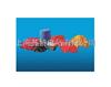 4346不饱和聚酯玻璃纤维增强片状模塑料