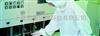 WB抗体产品价格信息【第 4001条-第 5000条】