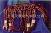 大电流电缆线