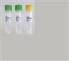 抗鼠CD4单克隆细胞;YTA 3.1.2
